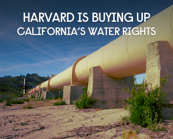 Harvard Quietly Buys Up California Water Rights As The State Faces A Megadrought