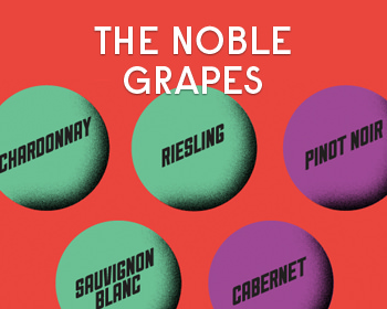 The 6 Noble Grapes: Their History and Influence On Wine