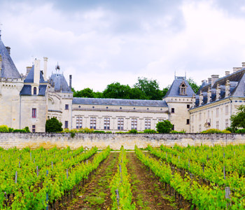 The French Wines To Drink Before You Die