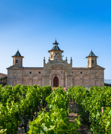Insiders Say These Are The French Wines To Drink Before You Die