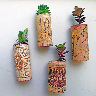 Make crafts with corks