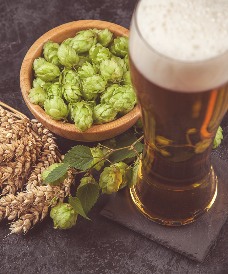 11 Questions About IPA You're Too Embarrassed to Ask, Answered