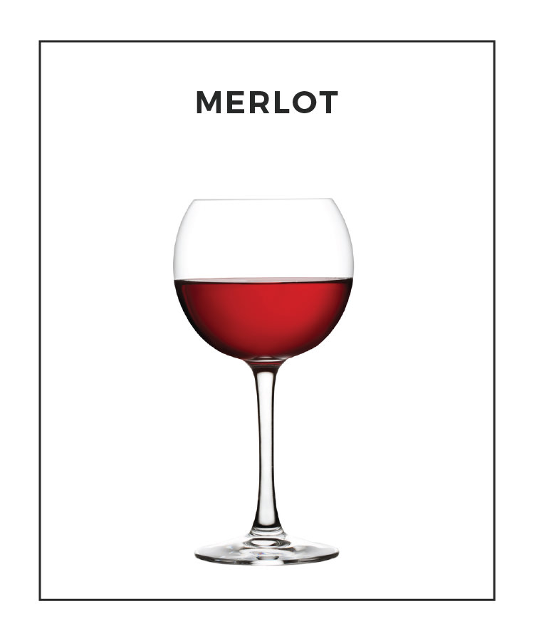An Illustrated Guide to Merlot