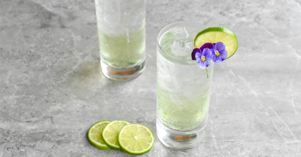 Chartreuse & Tonic Recipe