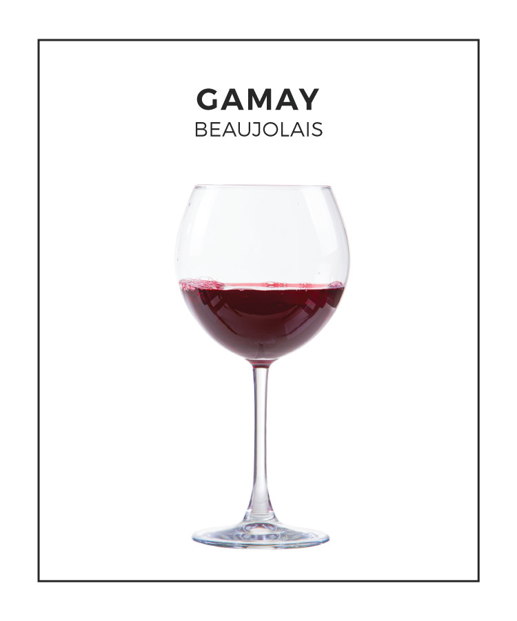 An Illustrated Guide to Gamay From Beaujolais