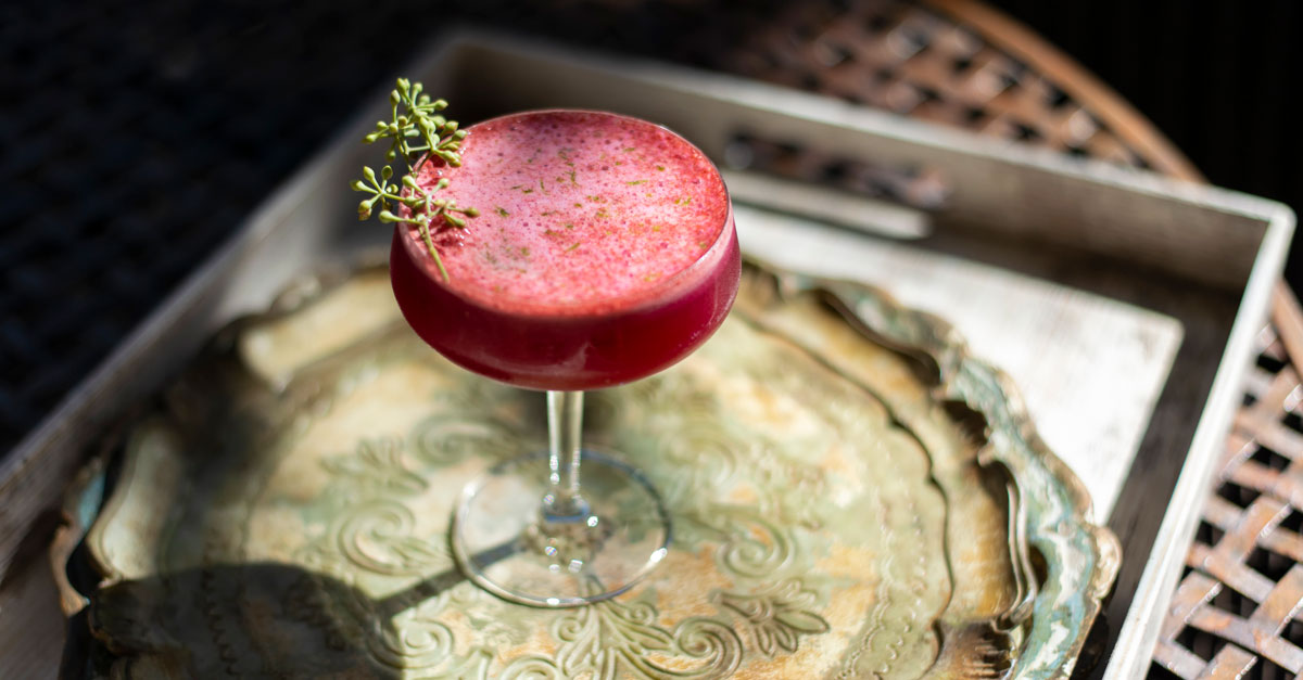 Herbaceous and earthy, this gin cocktail gets its froth from kombucha, and its lovely color from beet juice. Learn how to make the recipe!