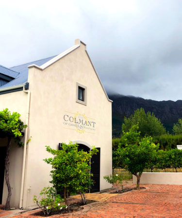 A Field Guide to South Africa's Best Sparkling Wines
