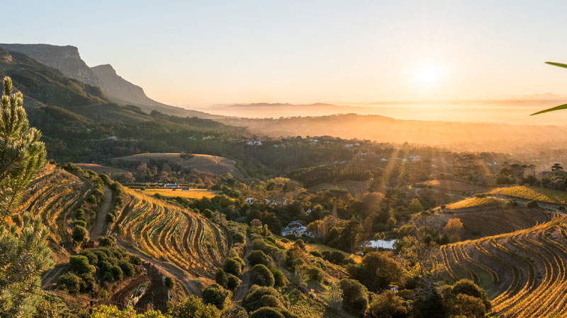 Cape Winelands is one of the top 10 wine travel destinations for 2020.
