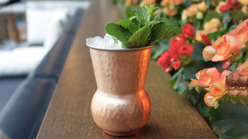 The Italian Julep
