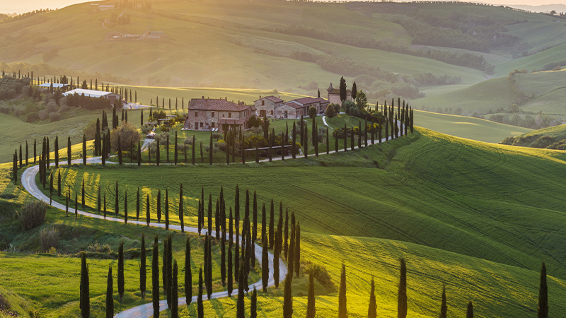 Tuscany is one of the best wine-making regions.