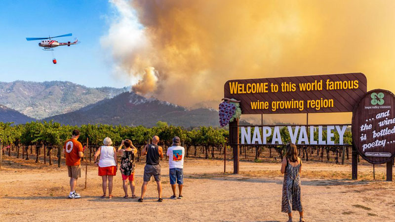 This is how California wineries are preparing for the 2021 wildfire season