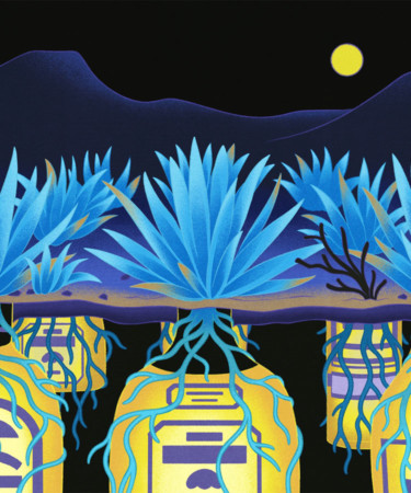 Agave Activists Are Working to Preserve Mexican Lands as Tequila and Mezcal Boom
