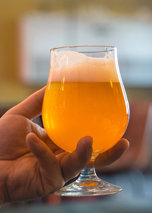 Gose is a type of sour beer.